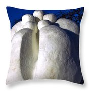 The Secret  At Snowfest 2012 Throw Pillow