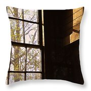 The Secret Room Throw Pillow