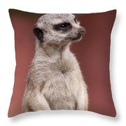 The Sentry Throw Pillow