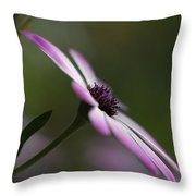 The Serenity Of Spring  Throw Pillow