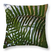 The Shade Of A Fern Throw Pillow
