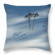 The Shadow Of Loneliness Throw Pillow
