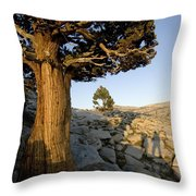 The Shadow Of Two Hikers Stands Next Throw Pillow