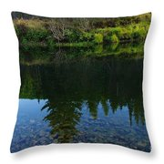 The Shadows Of Trees  Throw Pillow