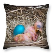 The Shimmering Blue Egg Throw Pillow