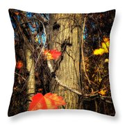 The Show Is Almost Over Folks Throw Pillow