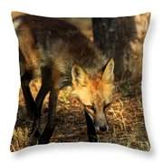 The Silent Approach Throw Pillow