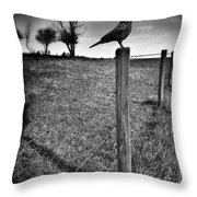 The Silent Warn  Throw Pillow