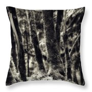 The Silent Woods Throw Pillow