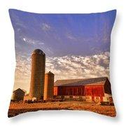 The Skittles Barn Throw Pillow