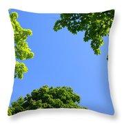 The Sky Through Trees Throw Pillow