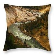 The Snaking Yellowstone Throw Pillow
