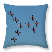 The Snowbirds Throw Pillow