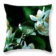 The Soft White Blossom  Throw Pillow