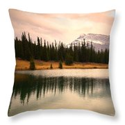 The Sparkle  Throw Pillow