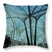 The Spiders Web Throw Pillow