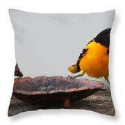 The Splits Throw Pillow