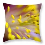 The Stamen Of A Flower Throw Pillow