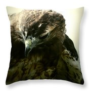 The Stare From The Air Throw Pillow