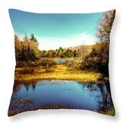 The Still Of Autumn In The Adirondacks Throw Pillow