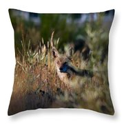 The Story Is In The Eyes Throw Pillow