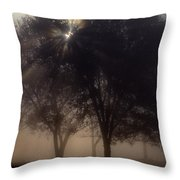 The Sun Peeks Through The Branches Throw Pillow