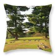 The Sunny Stroll Throw Pillow by Sonali Gangane