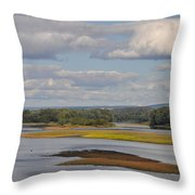 The Susquehanna River At Kingston Pa. Throw Pillow