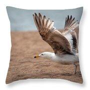 The Take Off Throw Pillow