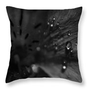 The Tears Have All Been Shed Throw Pillow