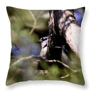 The Thief Throw Pillow