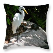 The Tortoise And The Heron Throw Pillow