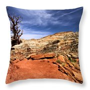 The Trail Ahead Throw Pillow