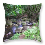 The Trail By The Creek Throw Pillow