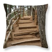 The Trail To The Top Throw Pillow