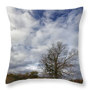 The Tree At The Side Of The Road Throw Pillow