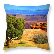 The Tree The Canyon And The Mountains Throw Pillow