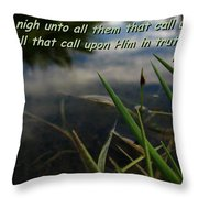 The Truth Factor Throw Pillow
