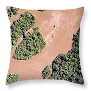 The Turbid Ituri River Channels Its Way Throw Pillow