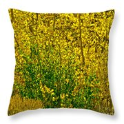 The Turn  Throw Pillow by L J Oakes