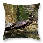 The Turtles Throw Pillow