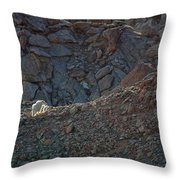 The Uphill Road Throw Pillow