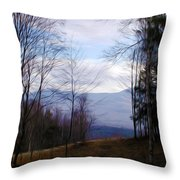 The Vermont Woods - Stowe Throw Pillow