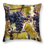 The Vineyard Throw Pillow by Linda Mishler