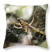 The Waiting Game V2 Throw Pillow