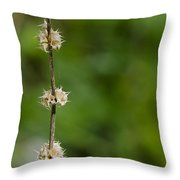 The Wand Of Winter Faces The Power Of A Green Spring Throw Pillow