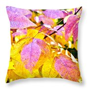 The Warm Glow In Autumn Abstract Throw Pillow