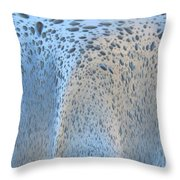 The Wash Cycle Throw Pillow