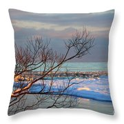 The Water's Edge Throw Pillow