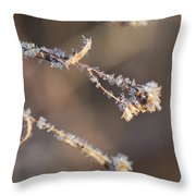 The Weight Throw Pillow